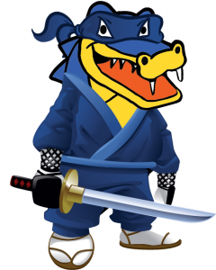 Hostgator review and coupon in Feb 2014 to share