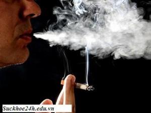 Bệnh ung thư do hút thuốc lá gây nên, benh ung thu do hut thuoc la gay nen