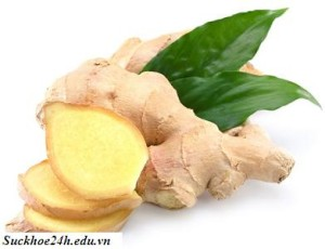 Thực phẩm có tác dụng chữa bệnh, thuc pham co tac dung chua benh