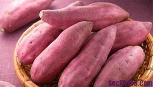 Khoai lang giúp phụ nữ mang thai phòng ngừa táo bón, khoai lang giup phu nu mang thai phong ngua tao bon