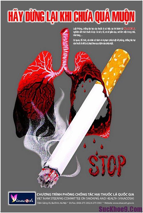 Thuốc lá là nguyên nhân chính gây ung thư phổi, vì vậy tuyệt đối không được hút thuốc lá